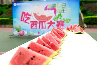 吃西瓜大赛欢乐消暑